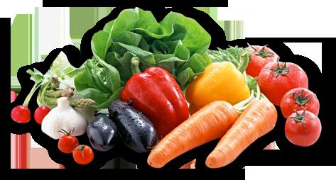Kost och Träning
